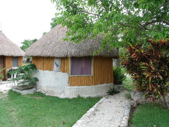 Gringo Dave's Last Resort: Our hut