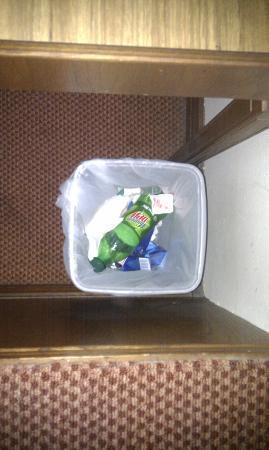 Fontainebleau Motor Inn: previous guests rubbish still in bin