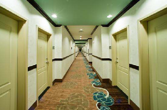 Beautiful Quiet Corridors - Picture of Hampton Inn & Suites by ...