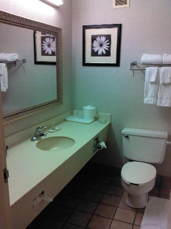 Jameson Hotel & Conference Center: Bathroom room 130