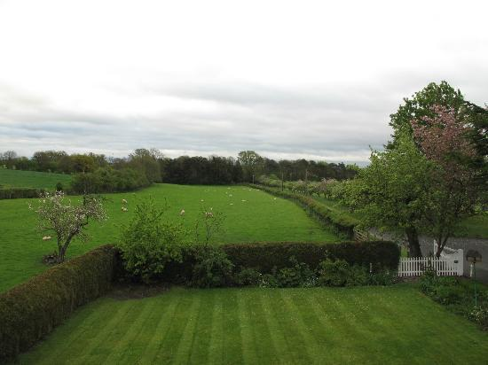 Ingon Bank Farm: View from room #3