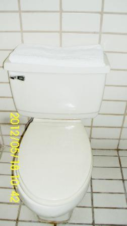 Sunny Bay Suites: toilet bowl