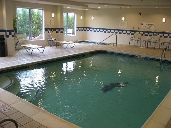 Fairfield Inn & Suites Toledo North : Indoor pool