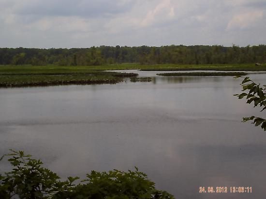 Cumberland Marsh Natural Area Preserve