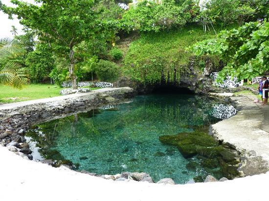 Upolu Piula Cave Pool Updated 2019 All You Need To