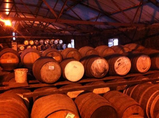 An Taigh Osda : bruichladdich distillery tour