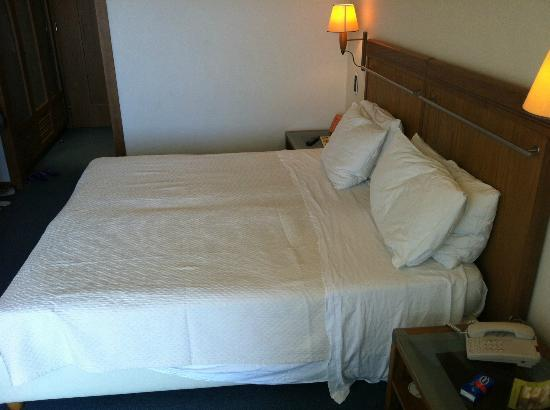 Alexander Beach Hotel: Double room1