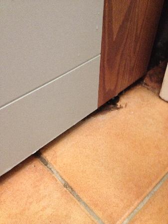 Pierre & Vacances Residence La Résidence du Golf : Dirt on floor under tub