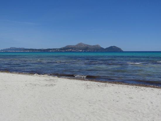 Family Life Alcudia Pins: Beach