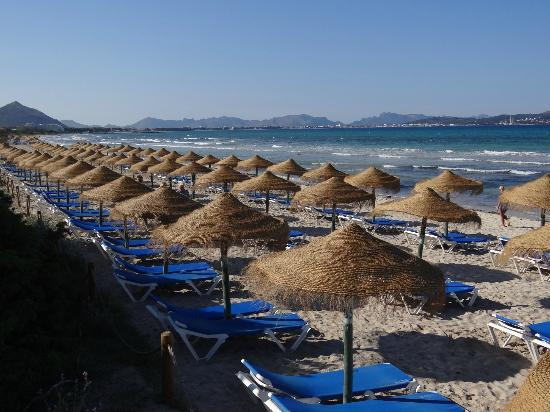 TUI FAMILY LIFE Alcudia Pins: Beach