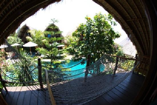 KIMA Surfari : View from the Room