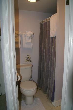 1848 Island Manor House: bathroom
