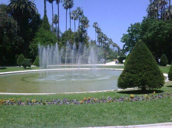 Jardin d 39 essai alger picture of algeria africa for Jardin d essai alger
