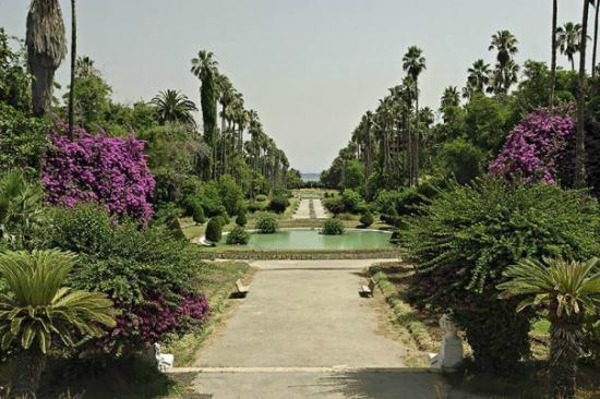 Алжир: jardin d'essai à Alger