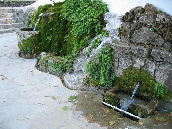 Cuevas del Becerro: El agua del nacimiento