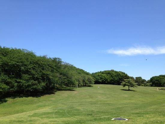 Negishi Shinrin Park