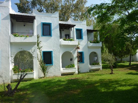 موسكيبي أبارت: les chambres et leurs terrasses