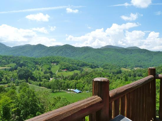 Wildberry Lodge: View