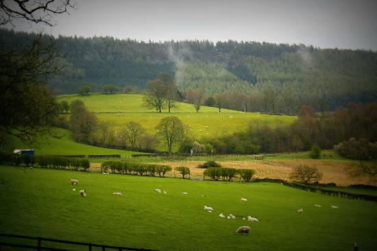 The idyllic view from the front door of Laskill Country House