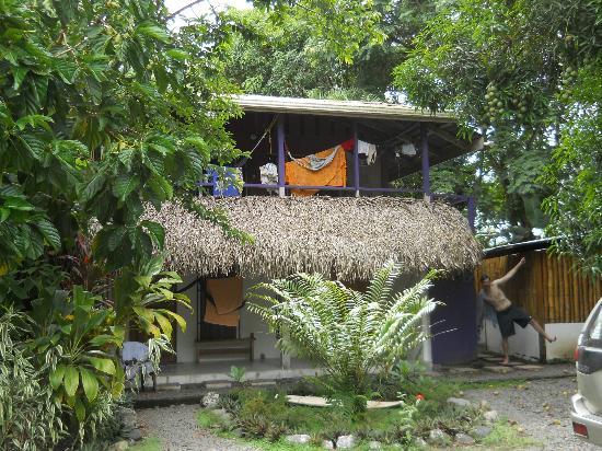 Cabinas Carol : My bungalow