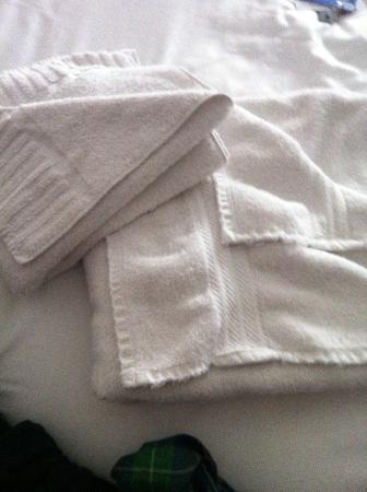 Swinton Hotel: horrid towels