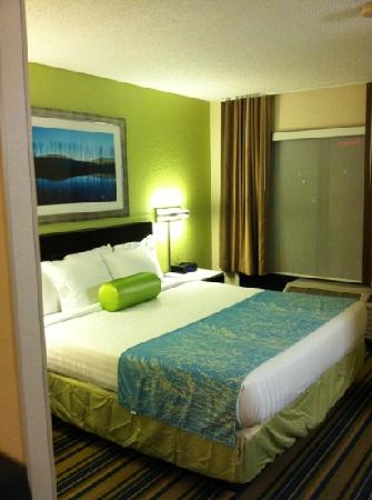 SpringHill Suites Houston Hobby Airport: king bedroom