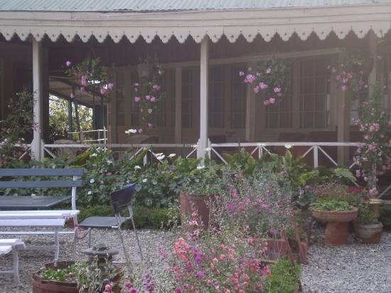 Hotel Padmini Nivas: flowers every where