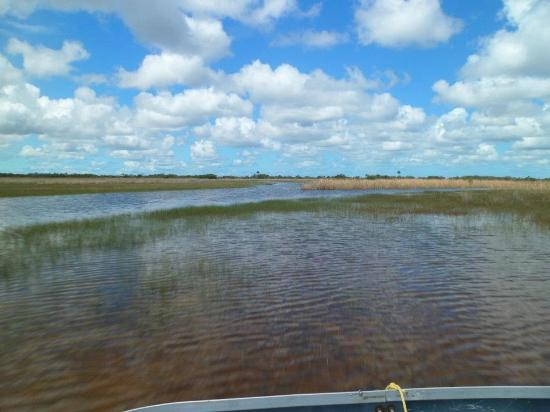 Capt Mitch's - Everglades Private Airboat Tours : scenery
