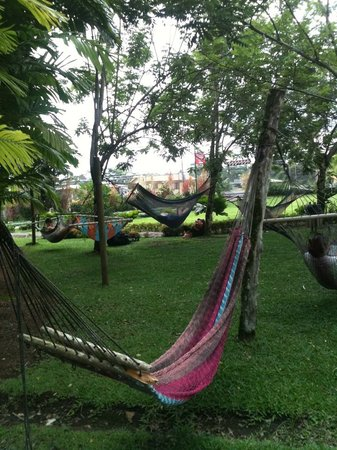 Arenal Backpackers Resort: Comfy hammocks with view of the volcano