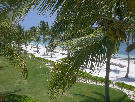Tortuga Bay, Puntacana Resort & Club: View from Villa