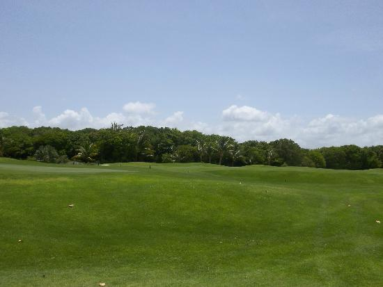 Tortuga Bay, Puntacana Resort & Club: Unbelievable golf grounds....