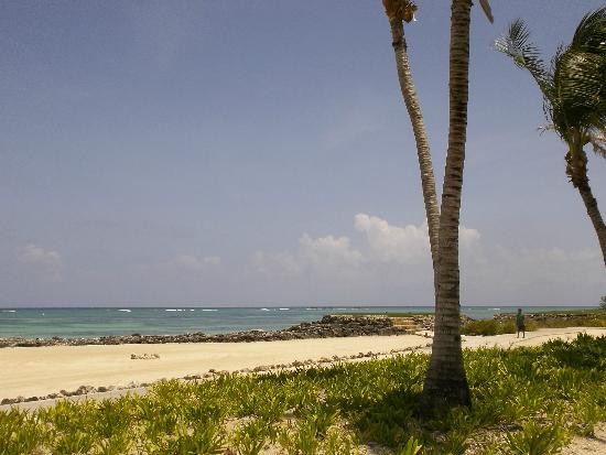 Tortuga Bay Hotel Puntacana Resort & Club: Wonderful views
