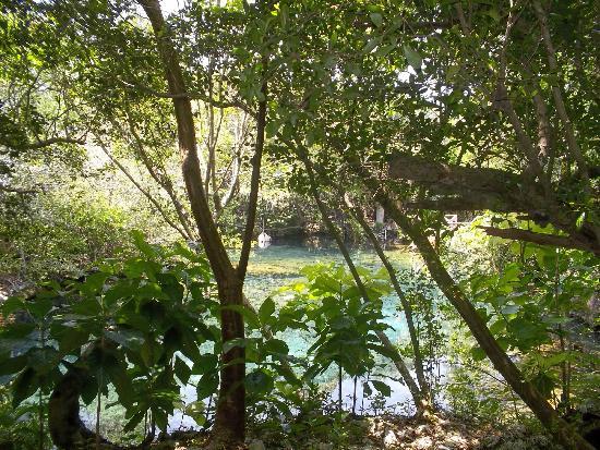 Tortuga Bay, Puntacana Resort & Club: Another lagoon