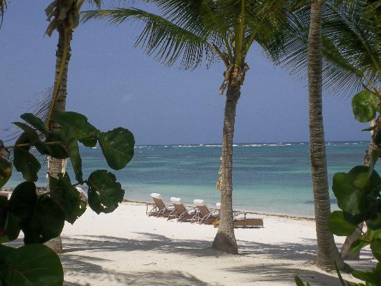 Tortuga Bay Hotel Puntacana Resort & Club: Waiting for you!