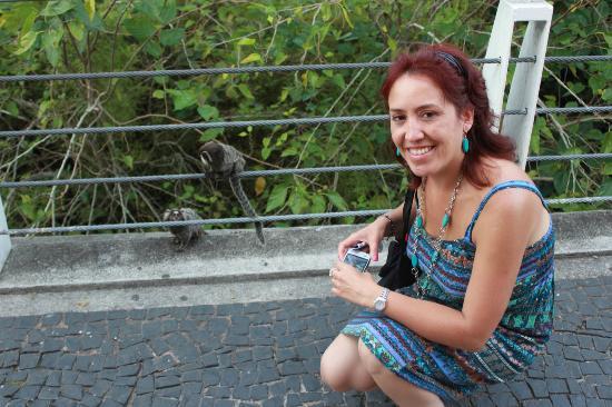 TourGuide Neyla: Sugerloaf - Monkey Photo Opp