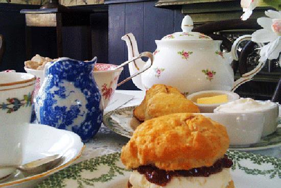 Blackbird Tea Rooms Brighton United Kingdom
