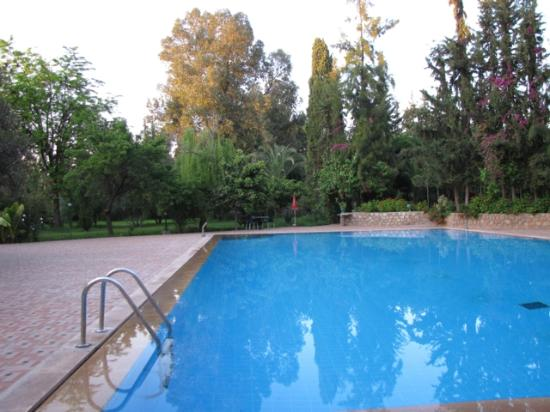 Beni Mellal, Morocco: pool in the garden