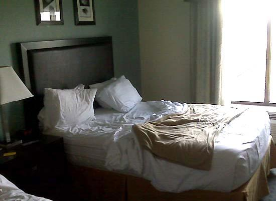 Holiday Inn Express Hotel & Suites: Comfy bed with niatural light