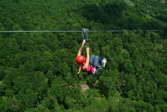 New York Zipline Adventure Tours : Fly High above the trees.