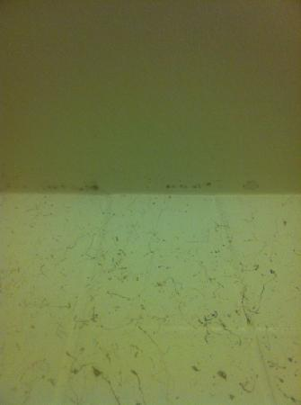 Capistrano Surfside Inn: mold on the shower ceiling