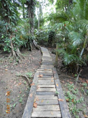 Congo Bongo Ecolodges Costa Rica: Walk to the beach