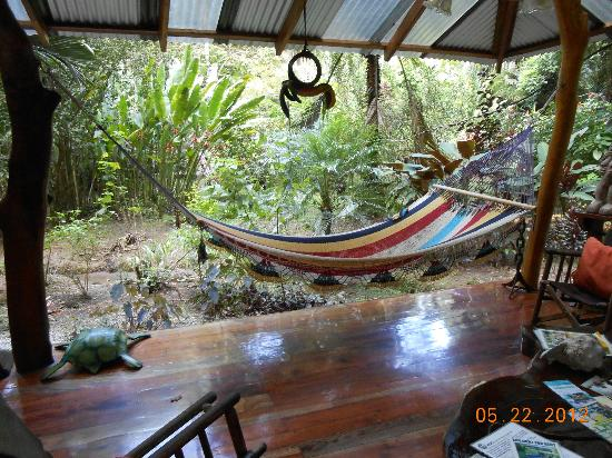 Medium image of congo bongo ecolodges costa rica  hammock