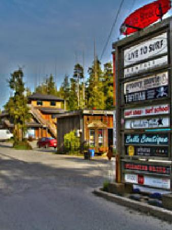 ‪Live To Surf - The Original Tofino Surf Shop‬