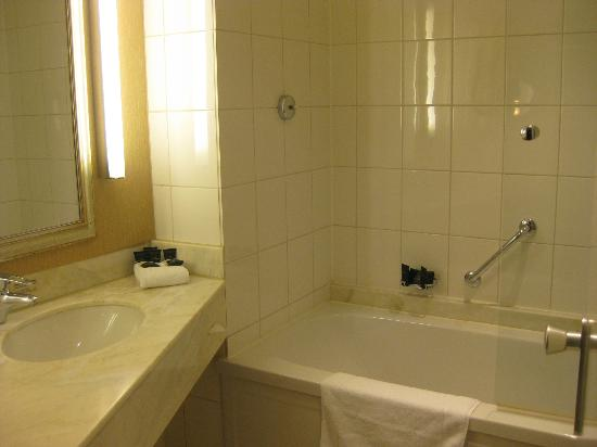 Bilderberg Garden Hotel: Bathroom sink and shower