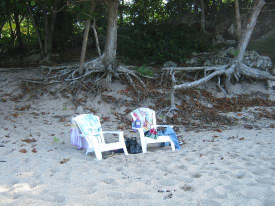 Bamboo Beach: You can put your chairs in the shade or in the sun!