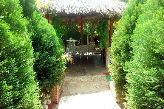 Hostal Casa La Curva: To the Garden