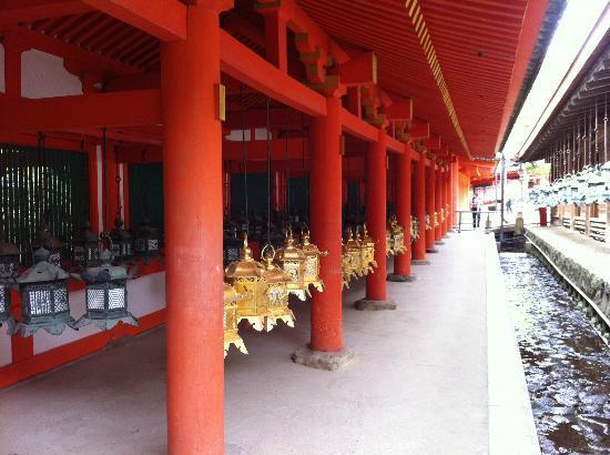 Kasuga Grand Shrine: The lantern