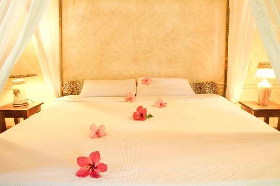 Forest Dream Resort: Romance
