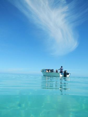 Blue Lagoon Beach Resort: Resort Boat