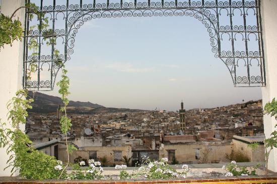 Dar El Ghalia: un joli tableau de la Médina vue de la terrasse